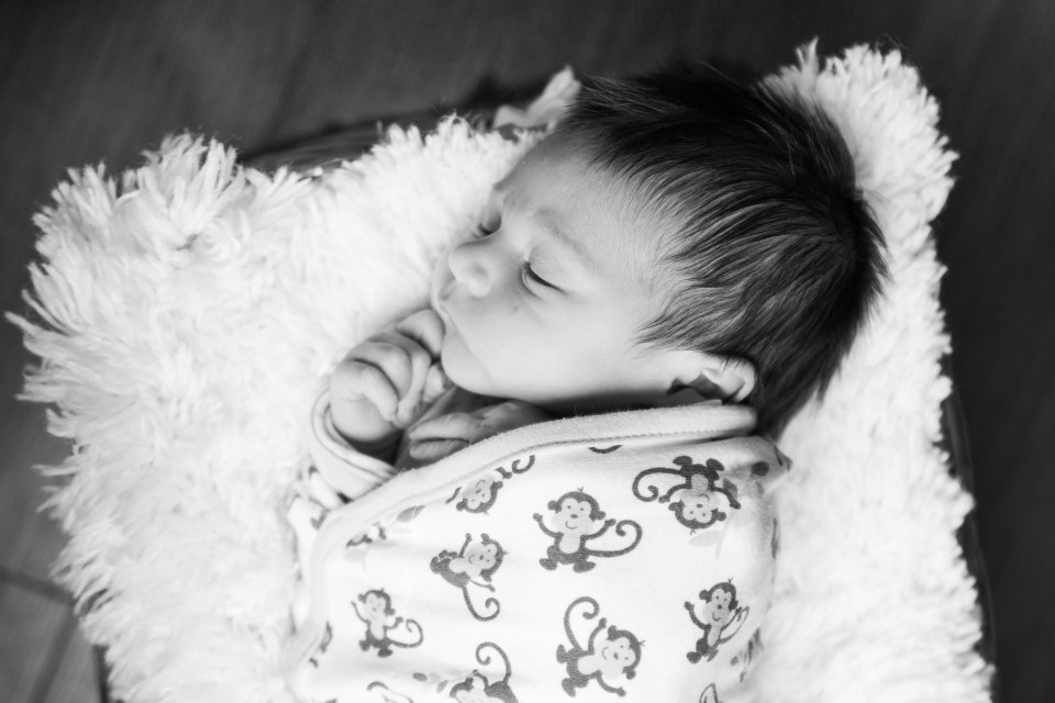 fredericton newborn family photography 2