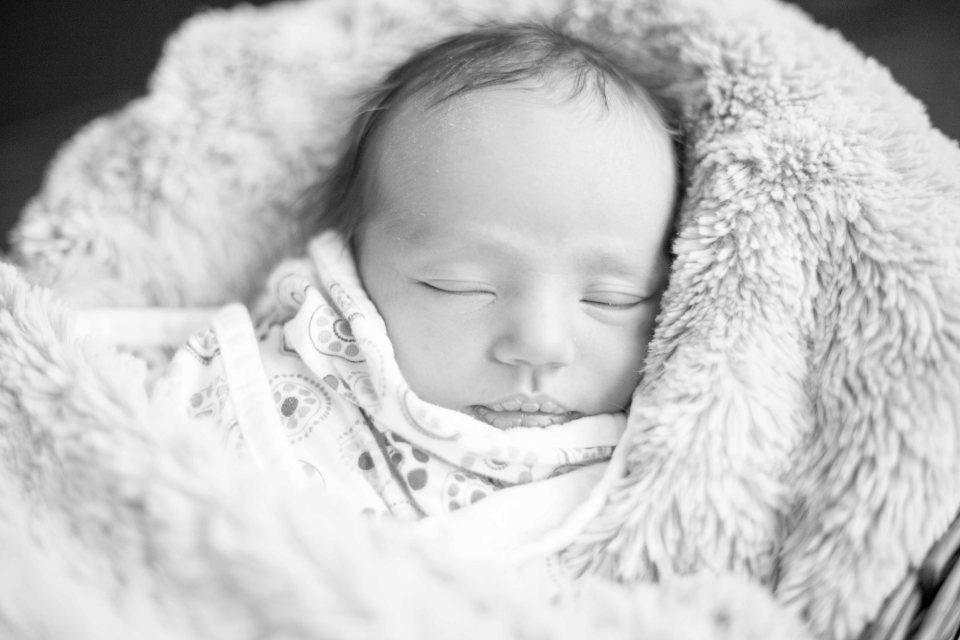 Fredericton Family Photographer_-4