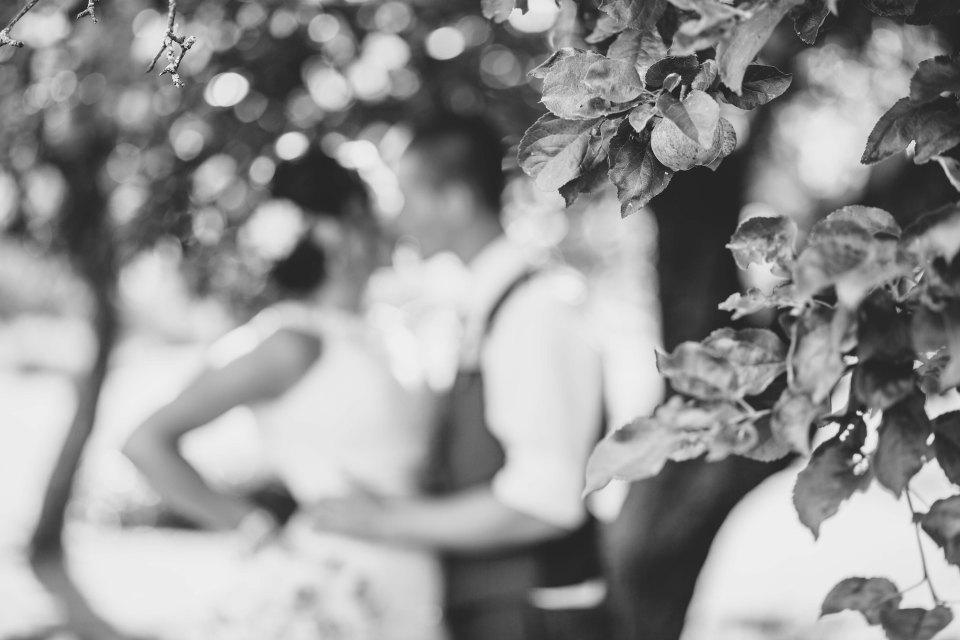 new brunswick wedding photographer-1