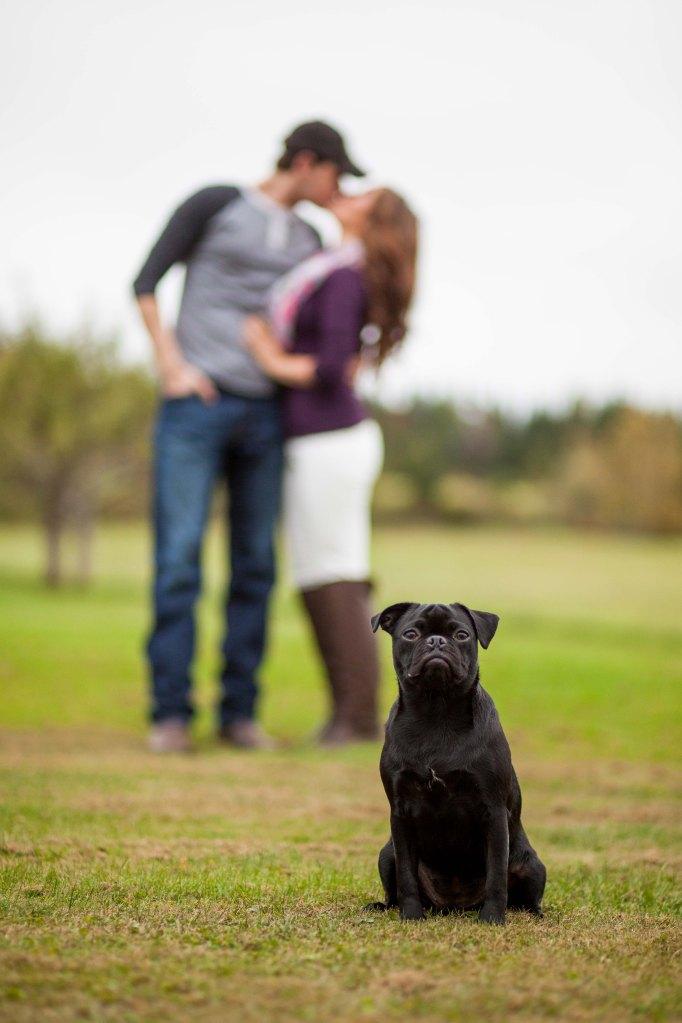 wedding photographer new brunswick-13